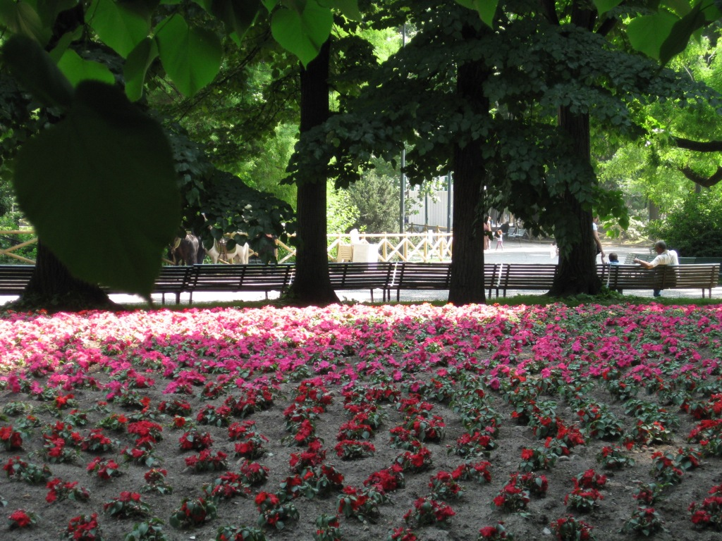 Milano 2011 135