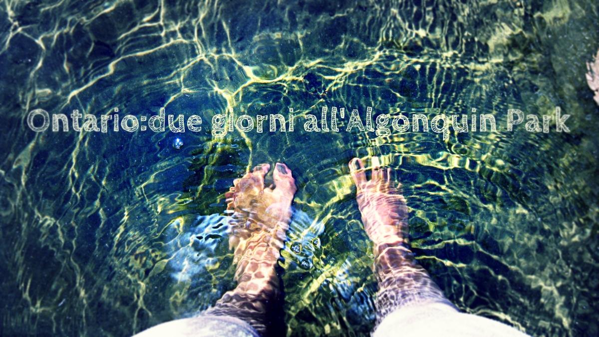 Ontario: due giorni all'Algonquin Park